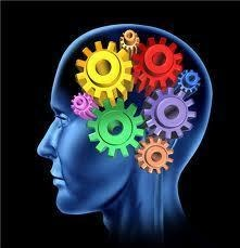 experimentation-sur-les-neurosciences